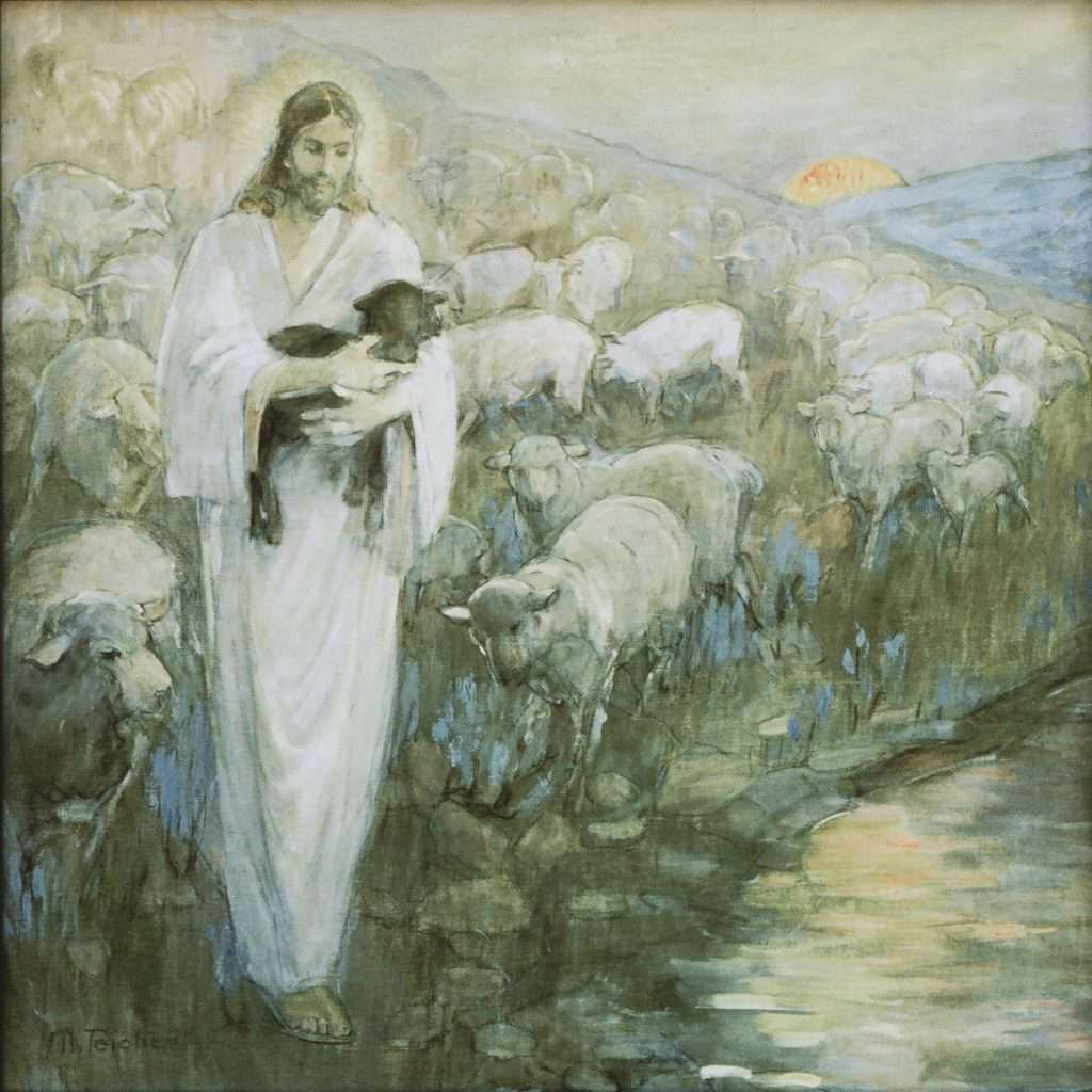 Rescue of the Lost Lamb